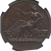 フランス ナポレオン1世 ローマへの進軍記念銅メダル[FDC]【裏面】