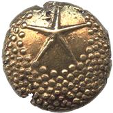 英領インド マドラス保護領 1パゴダ金貨[VF]【裏面】