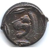 古代ギリシャ  レンティーニ テトラドラクマ銀貨[EF+]【裏面】